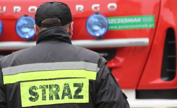 Sześcioro dzieci zostało lekko rannych w wypadku autobusu rejsowego w Kacicach na Mazowszu.
