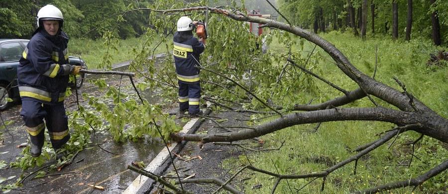122 razy interweniowali podkarpaccy strażacy w związku z nawałnicami, które po południu przeszły nad tym województwem. W województwie śląskim strażacy mieli ok. 60 wezwań.