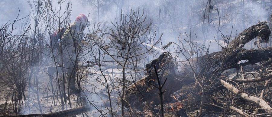 Pożar, który 17 czerwca wybuchł w Pedrogao Grande w środkowej Portugalii, doprowadził do strat materialnych przekraczających 20 mln euro - poinformował rząd w Lizbonie. W rezultacie pożaru zginęły 64 osoby.