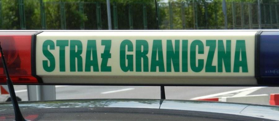 Funkcjonariusze Straży Granicznej uratowali w Bieszczadach rodzinę nielegalnych imigrantów z czwórką małych dzieci. Do Polski przybyli z Rosji. Dzieci miały gorączkę, wszyscy byli przemoczeni i głodni.