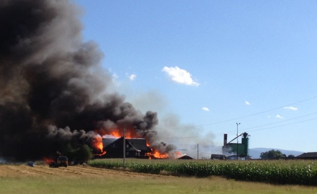W Szybowicach na Opolszczyźnie trwa dogaszanie pożaru, który objął tartak, dom, magazyn i pobliskie pole. Ogień pojawił się tam po południu. Ze wstępnych ustaleń strażaków wynika, że pożar wybuchł w suszarni. Informację o zdarzeniu oraz zdjęcia otrzymaliśmy na Gorącą Linię RMF FM.