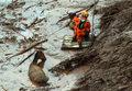 Sąd w Brazylii zawiesił postępowanie ws. katastrofy ekologicznej z 2015 roku
