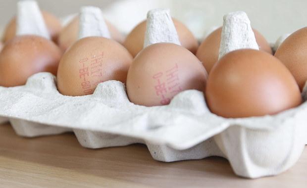 Jak donosi Główny Inspektorat Sanitarny, w Polsce pojawiły się jaja skażone fipronilem. Przetworzone trafiły z Holandii do Polski. Co to jest fipronil i czym może grozić kontakt z tą substancją?