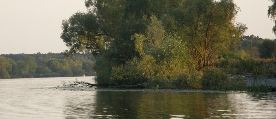 Ciało mężczyzny pływające obok przewróconej łódki zostało wyłowione z rzeki Płoni w zachodniopomorskim Kołbaczu. Na miejscu trwa akcja straży pożarnej i policji.