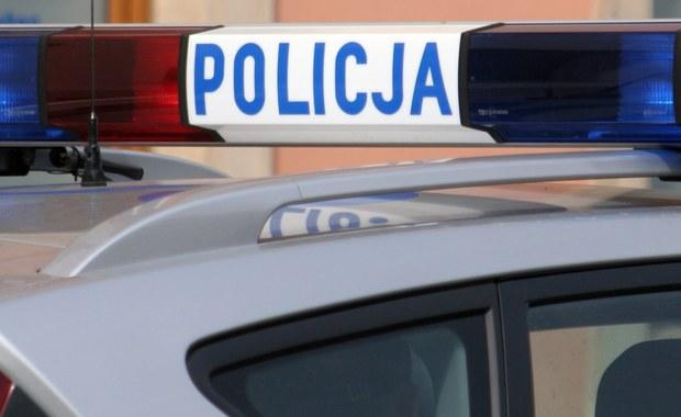 Podcięte drzewa przy drodze wojewódzkiej nr 435 w rejonie Wawelna na Opolszczyźnie. Ślady świadczą, że ktoś zrobił to celowo. Służby drogowe odkryły dwa takie drzewa. Sprawą zajęła się już policja.