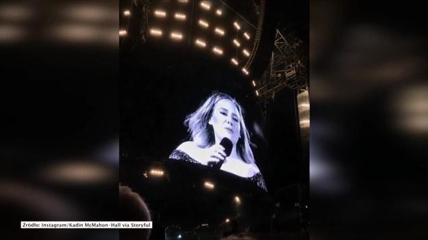 Australia. Podczas koncertu w Brisbane Adele została niespodziewanie zaatakowane przez komary. Nie zepsuło to dobrego humoru piosenkarki, która zapewniła publiczność, że wcale nie boi się owadów. (STORYFUL/x-news)   UWAGA! Ze względu na przepisy licencyjne materiał dostępny tylko na terytorium Polski.