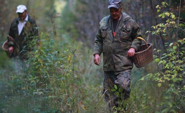 30-letni grzybiarz z Czarkowa na Śląsku szczęśliwie odnaleziony. Mężczyzna spędził w lesie dwa dni. To trzecia od piątku osoba, która zgubiła się w śląskich lasach szukając grzybów.