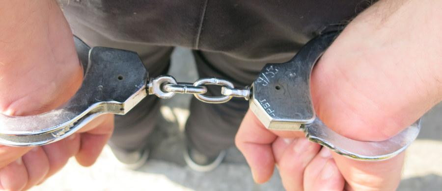 """Sąd rejonowy aresztował na dwa miesiące mężczyznę podejrzanego o okrutne zabicie psa. Uwzględnił tym samym wniosek garwolińskiej prokuratury w sprawie aresztu - poinformowała Prokuratura Okręgowa w Siedlcach. Mężczyźnie grozi do trzech lat więzienia. """"Z dotychczasowych ustaleń dochodzenia wynika, że podejrzany 11 września w miejscowości Natolin, działając w bezpośrednim zamiarze uśmiercenia należącej do innej osoby szczennej suki, zadał zwierzęciu kilka uderzeń tępym narzędziem w okolice pyska i głowy, powodując utratę przytomności, a następnie żyjące jeszcze zwierzę włożył do worka foliowego i zakopał w ziemi"""" - podała siedlecka prokuratura okręgowa. Śledczy dodali, że zachowanie podejrzanego Henryka K. """"zakwalifikowane zostało jako działanie ze szczególnym okrucieństwem""""."""