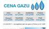 CENY GAZU W POLSCE HEG PGNiG KONERG TAURON Gaspol DUON EC PGE -