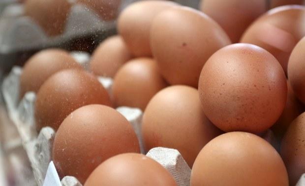 W handlu we Włoszech brakuje co miesiąc 100 mln jajek, co jest skutkiem spadku produkcji o 10 proc. po wprowadzeniu nowych zasad bezpieczeństwa z powodu przypadków ptasiej grypy i skażenia fipronilem w Europie - ogłosił związek rolników.