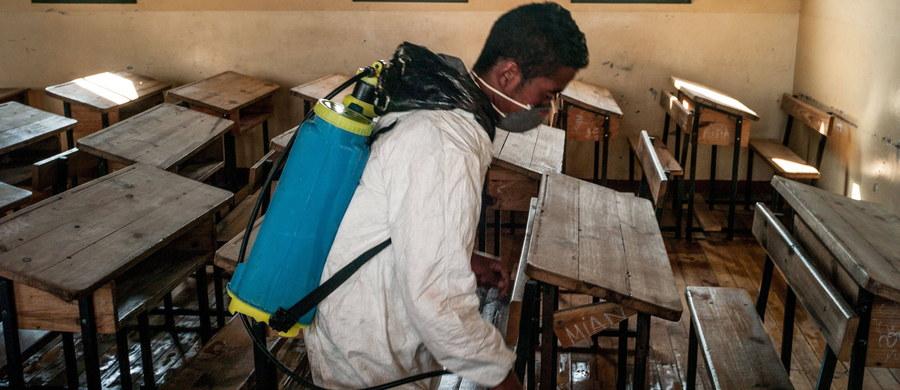 """Już 195 osób zmarło z powodu epidemii dżumy na Madagaskarze. Jak podała Światowa Organizacja Zdrowia, tylko w ostatnim tygodniu """"czarna śmierć"""" zabiła 64 osoby. Naukowcy określają, że to najgorsza epidemia tej choroby od 50 lat."""