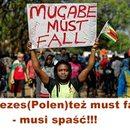 Dał nam przykład lud Zimbabwe