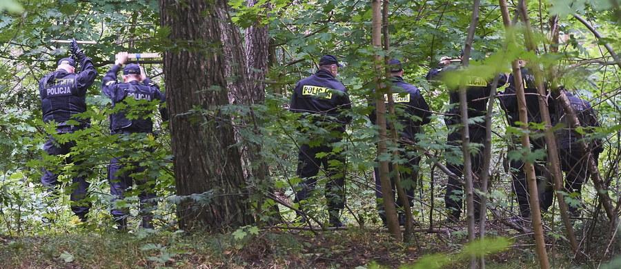 W Gdańsku ruszyły dziś kolejne poszukiwania ciała Iwony Wieczorek. Kilkudziesięciu policjantów przeczesuje teren dawnych działek w pasie nadmorskim. To nieopodal miejsca, w którym w lipcu 2010 roku zaginęła 19-latka.