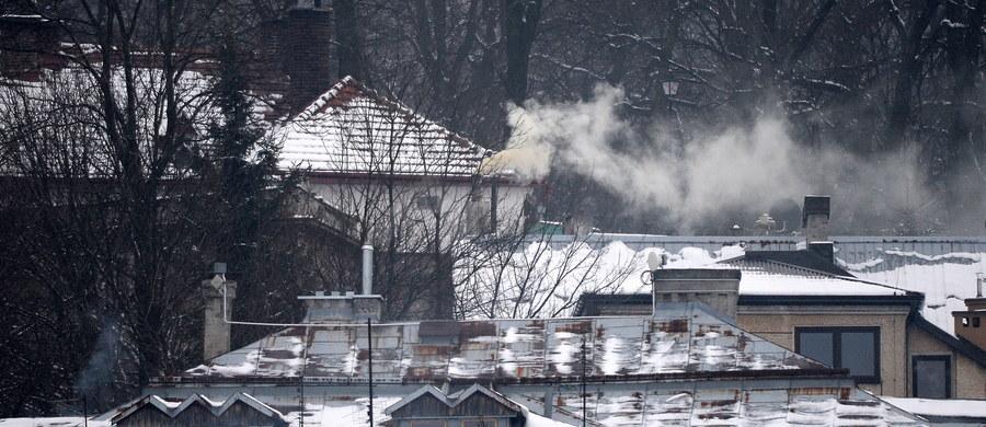 Jakość powietrza w Polsce jest dziś najgorsza w Europie - wynika z danych zamieszczonych na stronie internetowej Europejskiej Agencji Środowiska. Największy smog jest w centralnej i południowo-wschodniej Polsce.