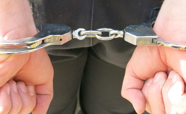 Na wniosek Prokuratury Okręgowej w Opolu sąd aresztował trzech mężczyzn podejrzanych o udział w przemycie narkotyków z Holandii na wielką skalę - poinformowała rzecznik Centralnego Biura Śledczego Policji, Iwona Jurkiewicz.