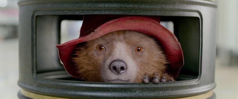 """Mały miś chce podarować cioci cenny album. Niestety, ukradnie go pewien złośliwy jegomość. """"Paddington 2"""", który 29 grudnia debiutuje na ekranach polskich kin, to wspaniałe kino ze znakomitymi aktorami i równie świetnym dubbingiem."""
