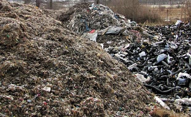 Legalne składowisko czy ekologiczna bomba i magazyn odpadów bez odpowiednich zgód? Mieszkańcy i władze Głuszycy na Dolnym Śląsku zaalarmowali nas o tonach odpadów zwożonych na ich teren.