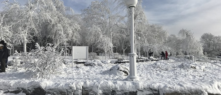 Fala mrozów, obfite opady śniegu i silny wiatr spowodowały chaos na Wschodnim Wybrzeżu USA. W stolicy Florydy śnieg spadł po raz pierwszy od prawie 30 lat. W największych portach lotniczych w Nowym Jorku i New Jersey odwołano w czwartek ok. 2,7 tys. lotów.