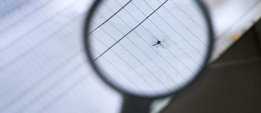 Uczeni z Akademii Górniczo-Hutniczej i Uniwersytetu Jagiellońskiego w Krakowie prowadzą badania, które pomogą lepiej zrozumieć proces zakażenia wirusem Zika i przyczynią się do opracowania skutecznych terapii przeciwwirusowych.