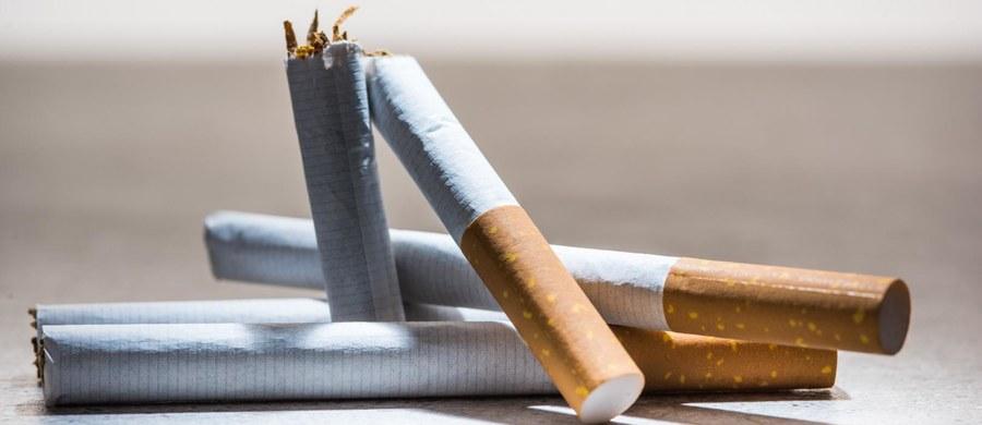 """Coraz więcej kobiet choruje na raka płuca. """"Z niepokojem patrzymy na wzrost zachorowań u kobiet"""" - podkreśla prof. Jacek Jassem, kierownik Kliniki Onkologii i Radioterapii Gdańskiego UM. - To do nich powinny być teraz adresowane kampanie motywujące do rzucenia palenia."""