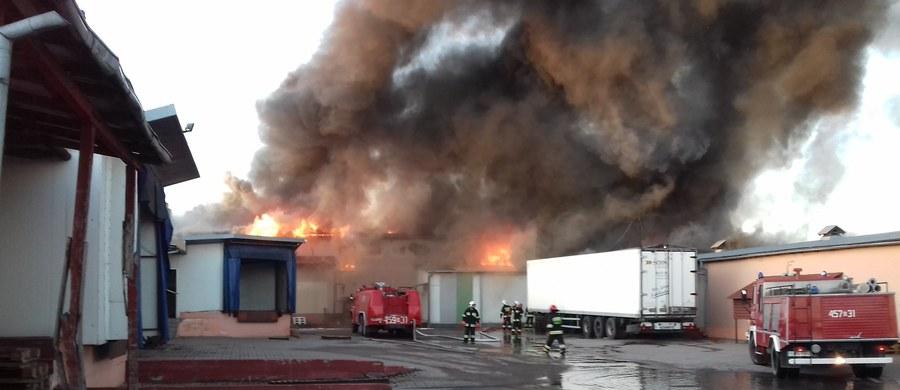 W Mońkach (Podlaskie) 16 zastępów straży pożarnej walczy z pożarem wędzarni. Akcję utrudniają silne podmuchy wiatru. Nie ma informacji o osobach poszkodowanych. Nie wiadomo, jak długo potrwa akcja gaśnicza.
