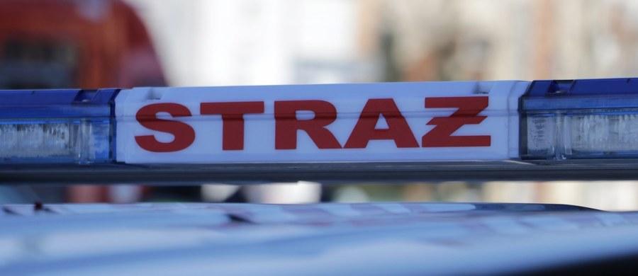 Tragiczny wypadek we Frydrychowicach w Małopolsce. Samochód osobowy wypadł z trasy, dachował i wpadł do potoku. Na miejscu zginęło dwóch mężczyzn, kobieta w ciężkim stanie trafiła do szpitala. Informację o tych tragicznych wydarzeniach dostaliśmy na Gorącą Linię RMF FM.