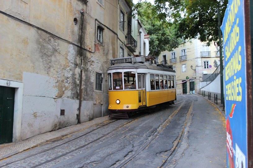 Setki mieszkających w Lizbonie przewodników turystycznych korzysta na rozpoczętym na początku maja w stolicy Portugalii europejskim festiwalu piosenki. Muzykom i dziennikarzom obsługującym tę imprezę, a przede wszystkim licznie przybyłym z okazji Eurowizji turystom, oferują oni swoje usługi.