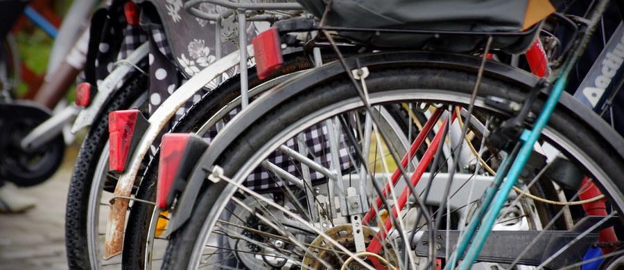 """Rowerzyści, którzy jeżdżą w korkach drogowych, mimo że wyprzedzając samochody, zyskują na czasie, to wdychają """"całą tablicę Mendelejewa plus szkodliwe bakterie i wirusy, tumany kurzu"""" – ostrzega pulmonolog Anna Prokop-Staszecka."""