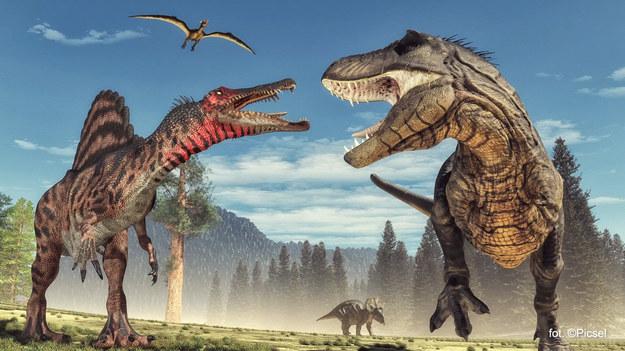 Wszyscy znamy smutny koniec nieszczęsnych dinozaurów. 66 mln lat temu w  płytkie morze w pobliżu półwyspu Jukatan uderzyła asteroida o średnicy ok. 10 km. Wywołała klimatyczną katastrofę, w wyniku której wymarło około 75 proc. gatunków zwierząt i roślin. Jakie zagrożenie niosą asteroidy?