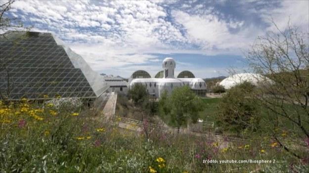 """Pod koniec lat 80. XX wieku na pustyni w stanie Arizona powstała największa szklarnia na świecie. Projekt """"Biosfera 2"""" miał odpowiedzieć na pytanie, czy człowiek jest w stanie odtworzyć ziemski ekosystem na innych planetach? O szczegółach tego eksperymentu opowiedział zastępca dyrektora Biosfery 2 John Adams. (Dzień Dobry TVN/x-news)"""