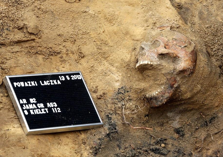 13 maja 2013. Na terenie tzw. Łączki Cmentarza Wojskowego na Powązkach wznowiono poszukiwania szczątków ofiar terroru komunistycznego z lat 1948-1956 /Tomasz Gzell /PAP