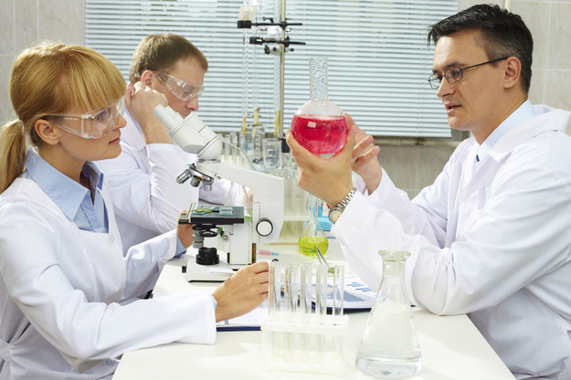 21 naukowców otrzyma 72 mln złotych na innowacyjne badania /© Glowimages