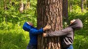 3 korzyści z bycia eko