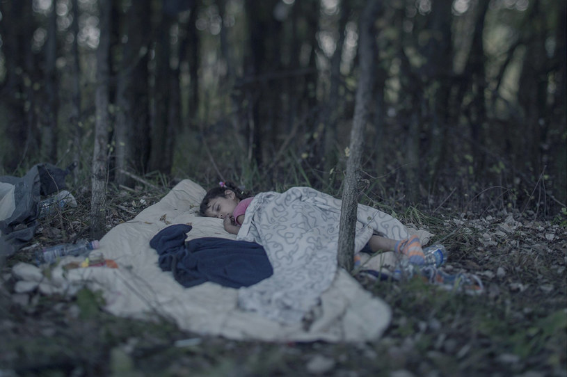 5-letni Lamar śpi w na kocu w lesie /fot. Magnus Wennman/Aftonbladet/REX Shutterstock /East News