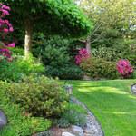 5 rad, jak przygotować ogród na przyjście wiosny