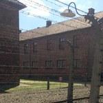 5 tys. zł grzywny dla 20-latka z Izraela, który znieważył pomnik ofiar w Auschwitz-Birkenau