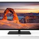 50-calowe i niedrogie telewizory LED Toshiby