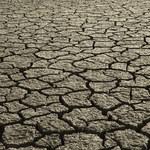50-stopniowe upały staną się normą
