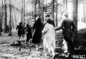 75 lat temu Niemcy dokonali największej egzekucji w Palmirach