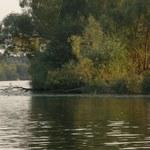 Akcja służb na rzece Płoni. Mężczyzna wypadł z łódki