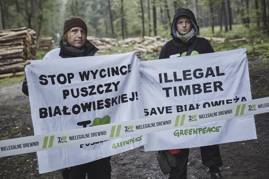 Aktywiści Greenpeace /Greenpeace/ fot. Grzegorz Broniatowski /