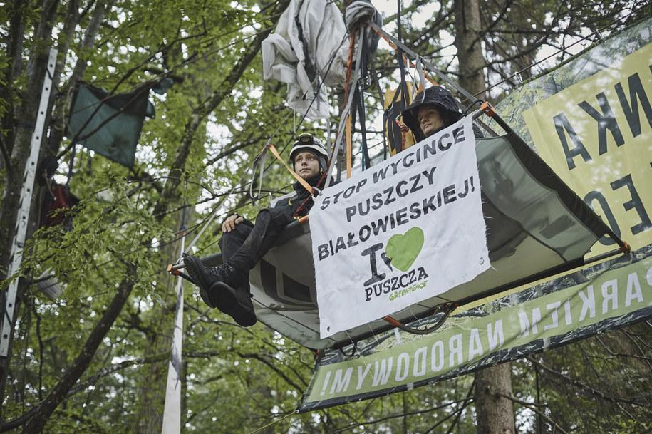 Aktywiści w Puszczy /Greenpeace/fot. Grzegorz Broniatowski /