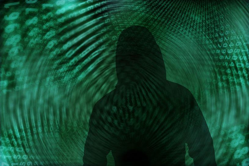 Aktywność cyberprzestępców rośnie /123RF/PICSEL