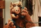 """""""Alf"""": Wraca kultowy serial!"""