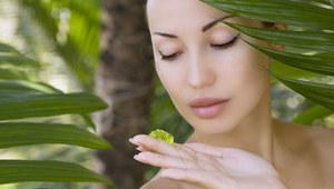 Aloes - zbawienie dla skóry
