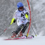 Alpejski PŚ - Szwed Hargin wygrał slalom w Kitzbuehel