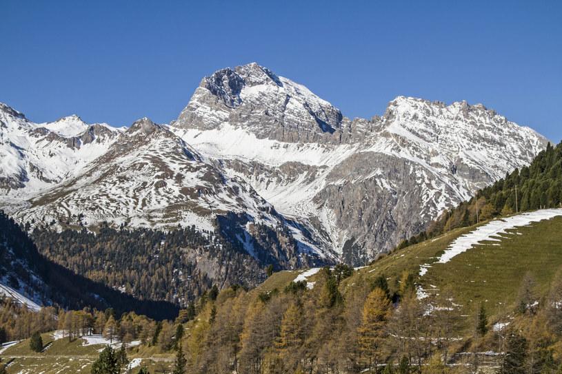 Alpy Retyckie /©123RF/PICSEL