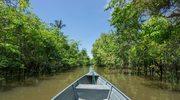Amazonia - zachwycająca dżungla