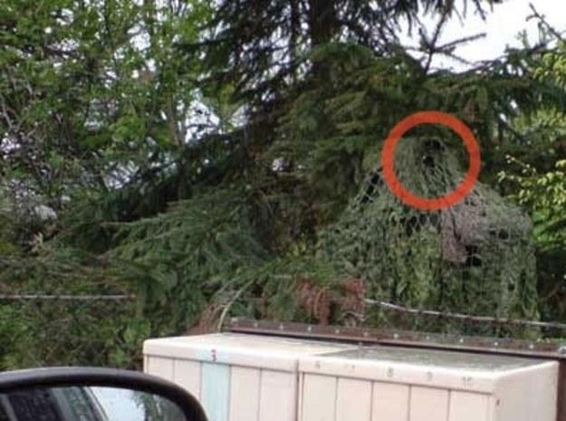 Kubły na śmieci, dziuple w drzewach, radiowozy okryte siatkami kamuflującymi, skuteczniejszymi niż te używane przez załogi czołgów SS /poboczem.pl