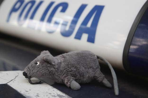 Policja usilnie zabiega o uchomikowienie - pardon: uczłowieczenie /poboczem.pl